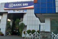 Bank Bri Terdekat di Papua